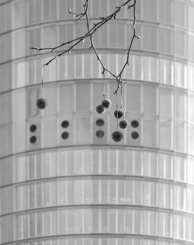 RWE-Turm Essen